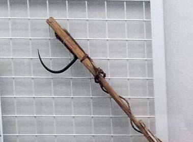 アイヌ民具「マレク」:カギはサケに刺さると重みで回転し、棒の先端部との間にはさまる。